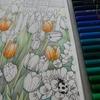 1】ホルベイン色鉛筆でチューリップのページを塗り始めました・森ラプより