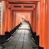 京都の観光情報をリアルに知りたいなら、「京もみじ」HPを見てみよう!