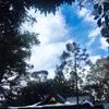Sanctuary of snow     雪の聖域