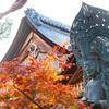京都・花園 - 晩秋の妙心寺境内散策