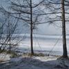 目覚めるとまた冬の景色