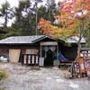 小淵沢の「仙人小屋」できのこさしみ定食。