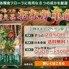 お酒の専門店ファーストお得情報 No.48
