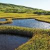 青空を映す池塘