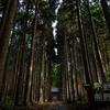 中能登町の不動滝は熊野神社とセットで!