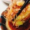 【瓜チャンプルーのお焼き】南国の味、隼人瓜(はやとうり)を使ったフワフワお焼き