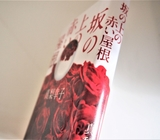 真梨幸子「坂の上の赤い屋根」のあらすじと感想