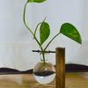 おしゃれな「電球型水栽培器」が届きました。