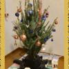IKEAで本物のもみの木を買う イケア・クリスマスツリー設置&飾り付けのポイント