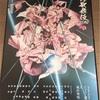 舞う桜の面影