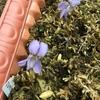 スミレサイシンの花