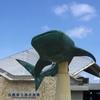 沖縄旅行記その3 レンタカーレビューと水族館