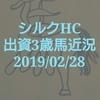 出資馬フライトストリーム&キービジュアル近況更新(2019/0228)