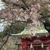 松田聖子 アルバムの名曲を語るシリーズその3:櫻の園(1999年アルバム「永遠の少女」より)