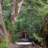北アルプス3日目:称名滝への下山