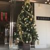 家具店もクリスマス仕様&ランチは「RAJA」のカレー♪ 12月15日