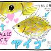 アイゴという魚
