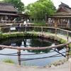 中池(山梨県忍野)