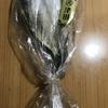 お酒に合う!津田水産『銚子産いわし白みりん』を食べてみた!