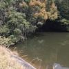 『後池』静岡県掛川野池群バス釣り完全攻略マップ
