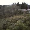 『地域の情報だけは追うな!』茨城県稲敷市地域おこし協力隊に任命され初日に思ったこと。