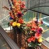 今週末開催!東京の大学6校の学園祭・文化祭情報【大学受験情報】