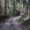 鹿沼市の完抜林道の道路状況(台風19号後)を実地調査した