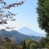 黄葉の百蔵山~日本三奇橋・猿橋