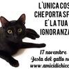 「黒猫」(1): イギリスではちょっとした黒猫ブームとか.しかし復権してきたとはいえ,まだまだ偏見は根強いようです.愛らしさの陰に秘められた黒猫受難の歴史を追うNHKBS「ヨーロッパ 黒猫物語~愛しきネコたちの不思議な運命~」イタリア編