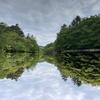 雲場池からハッピーバレーへ 木漏れ日の美しい散策路
