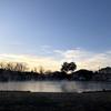[日記]小山ベリーパークで今年初トラウトフィッシング。寒すぎて指先凍るかと思ったわ・・・。