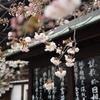 5.日本が世界に誇れる【J humind】 それは忘れられた日本の心