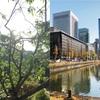 上京をするならどうすればいいのか?失敗しない上京するための方法「九州から東京上京した時の話」