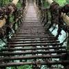 2020.7 徳島県の秘境 祖谷の宿 かずらや