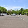奥多摩、高尾山に行かなくても自然を満喫。多摩市桜ヶ丘公園。