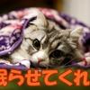 介護うつより介護に影響を及ぼす【睡眠障害】とにかく眠らせてくれ!