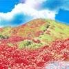 【日本百名山】越後駒ヶ岳(えちごこまがたけ)