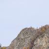 【一日一枚写真】秋化粧の八剣山 Part.2【一眼レフ】