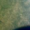 蛇の舞池(和歌山県和歌山)