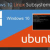 【Windows】【10】【WSL】Windows10 で Windows Subsystem for Linux を有効にする【SW】