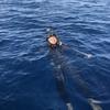 フリーダイビングと水圧の密接な関係性
