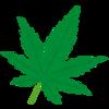 大麻は怖いよ