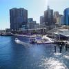 オーストラリア旅「シドニーと弾丸エアーズロックの旅!シドニーのフィッシュマーケットで魚介を満喫!」