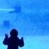 3連休は、名古屋港水族館、お誕生日会、イオン常滑へ♪