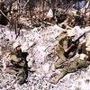 「死ぬのは簡単。生きるのは骨が折れる」 ◆ 「シリーズ証言記録 兵士たちの戦争 ペリリュー島 終わりなき持久戦 ~茨城県・水戸歩兵第2連隊~」