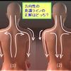 【理想的な筋肉の流れの方向をイメージして姿勢や動きをつくろう!】の小題を自作しました ^-^