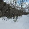 ◆'19/02/02     高館山④…横道を通って金沢コースへ。