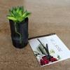 消臭インテリアの「飾り竹炭」で和洋折衷の暮らしを楽しむ