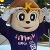響け熱き鉄筋音!すすめ我らの新日鐵住金グループ!(後編)