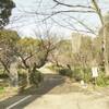 【大分の風景】大分県護国神社・その2:西南の役軍人墓地と慰霊碑群